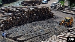 Mali i Zi: Gjykata mbyll hetimet mbi një varr masiv