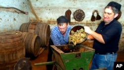 FILE - From right, Nikoloz Mamiashvili and Amiran Getiashvili press grapes in a local wine cellar in the wine rich Kakheti region of Georgia, about 100 km (62 miles) east of Tbilisi, Sept. 24, 2006. (AP Photo/ Shakh Aivazov)