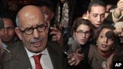 埃及改革倡导人士埃尔巴拉迪在开罗机场对支持群众发表谈话