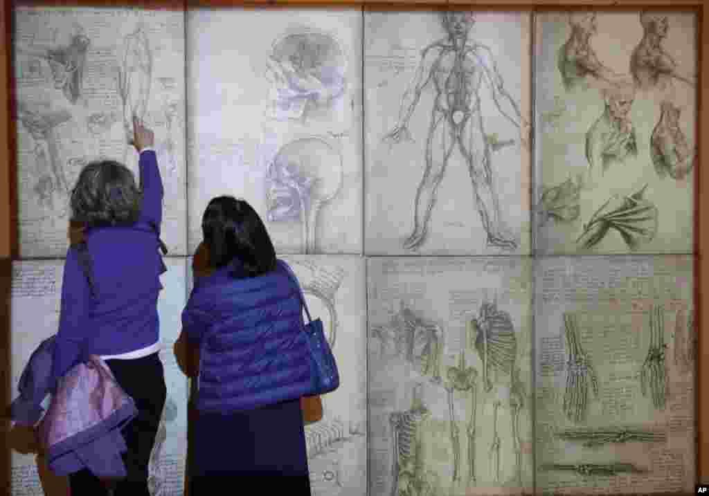 بازدیدکنندگان آثار به جای مانده از لئوناردو دواینچی در رُم؛ در حالی که ۵۰۰ سال از مرگ او میگذرد
