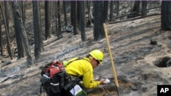 The U.S. Forest Service estimates the Rim Fire in and near Yosemite National Park will be 100 percent contained on Friday, Sept. 18, 2013.