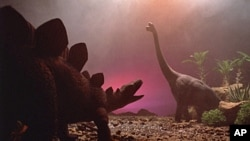 According to an expert, the rate of species loss today is higher than anything documented in the fossil record and many creatures could soon go the way of the dinosaurs.