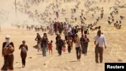 هزاران نفر از اقلیت ایزدی عراق به اسارت نیروهای داعش درآمدند و بسیاری از آنها به سوریه منتقل شدند.