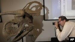 Creation Museum telah menambahkan kerangka-kerangka dinosaurus dan pameran berbagai jenis serangga untuk menarik lebih banyak pengunjung. (Foto: Ilustrasi)