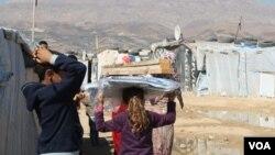 敘利亞難民。