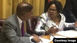 FILE: Joel Biggie Matiza with Information Minister Monica Mutsvangwa.