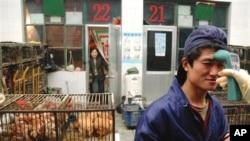 北京本地卫生人员为防止禽流感突发在为家禽市场一名年轻工作人员做体温检测(资料照片)