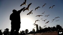 FILE - George Martinez feeds seagulls near the marina in Corpus Christi, Texas, July 14, 2016.