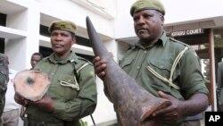 아프리카 모잠비크에서 케냐 나이로비를 거쳐 태국 방콕으로 밀매되던 코뿔소 뿔이, 나이로비 공항에서 적발됐다. (자료사진)