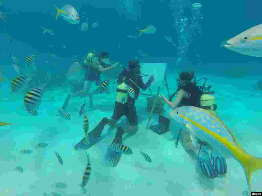 Cuban artist Sandor Gonzalez paints underwater for the media in Punta Perdiz, Cuba.