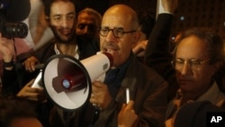 Egyptian Nobel Peace laureate and democracy advocate Mohamed ElBaradei addresses the crowd at Tahrir Square in Cairo, Jan 30, 2011