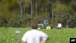 Traktor posipa zaštite na usjeve na američkoj farmi