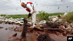2010 yılında BP'ye ait petrol platformunda meydana gelen facianın zararının yıllar süreceği tahmininde bulunuluyor.