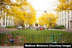 Northeastern University in Boston.