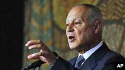 FILE - Ahmed Aboul-Gheit speaks during a news-conference in Sofia, Bulgaria, in 2010.