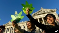 Los uruguayos podrán cultivar hasta seis plantas de marihuana en sus hogares para su consumo.