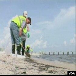 Plaže do kojih su doprle naftne mrlje stalno se čiste