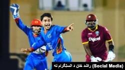 afghanistan cricket rashid khan