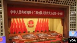 中国人大代表投票选举国家主席,副主席和人大委员长(美国之音东方拍摄)