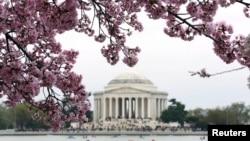 На фото: вид на Меморіал Джефферсона у Вашингтоні