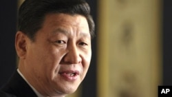 시진핑 중국 신임 공산당 총서기. (자료사진)