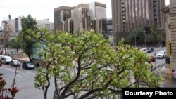 Vista de Joanesburgo