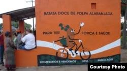 Sebuah kios yang mempromosikan ubi merah yang manis di Mozambik. (Foto: HarvestPlus)
