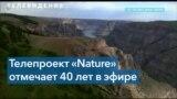Популярная ТВ-программа «Природа» на канале PBS отмечает свое 40-летие