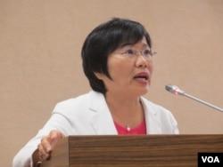 台灣執政黨民進黨立委劉世芳。(美國之音張永泰拍攝)