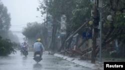 Cây cối bị đốn ngã sau bão Nari trên đường phố ở trung tâm thành phố Đà Nẵng, Việt Nam, ngày 15/10/2013.