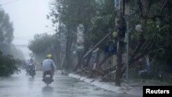 Cây cối đổ nát sau bão Nari trên đường phố ở trung tâm thành phố Đà Nẵng, Việt Nam, ngày 15/10/2013.