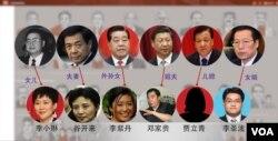 巴拿马文件透露,中国有些高官的亲戚有离岸帐户,图片显示了一部分(头像来自网络,美国之音合成)