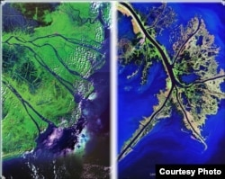 Cho dù cách nhau 12 múi giờ, hai vùng châu thổ Mekong (trái) và Mississippi (phải), có những điểm tương đồng về sinh cảnh môi trường, kinh tế xã hội và văn hoá. [Mô hình chụp từ vệ tinh của Cơ quan Khảo sát Địa dư Hoa Kỳ USGS ] (2)