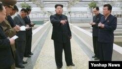 Lãnh tụ Bắc Triều Tiên Kim Jong Un (giữa) là cháu nội của lãnh tụ sáng lập Kim Il Sung.