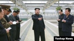 Lãnh tụ Bắc Triều Tiên đưa ra chỉ thị cho các giới chức trong một chuyến đi thị sát ở Bình Nhưỡng.