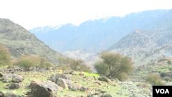 د لسیزې ډيره موده کیږي چې د افغانستان په خاوره د پاکستان له لورې توغندیز بریدونه کیږي.