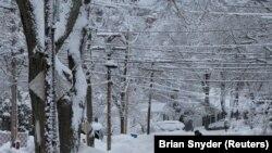 امریکہ کے کئی علاقے ان دنوں شدید سردی کی لپیٹ میں ہیں۔