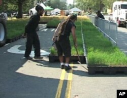 Containers of wheat plants at various stages of the life cycle formed a mobile wheat field that covered a quarter-block of a DC street.