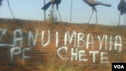 Clear political messages displayed in graffiti (Photo/Arthur Chigoriwa)