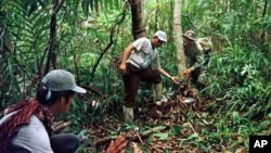 รายงานของกองทุนสัตว์ป่าโลกเปิดเผยว่าโลกกำลังเจ็บป่วย