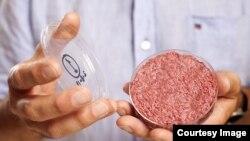 Miếng thịt bò được Giáo sư Mark Post làm từ phòng thí nghiệm