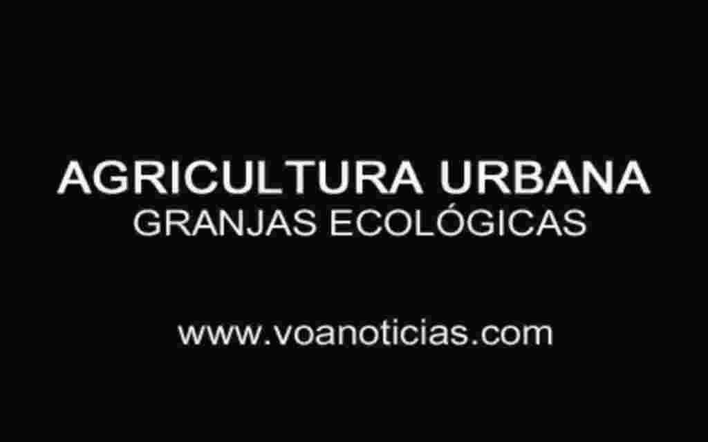 Agricultura urbana: granjas ecológicas en DC