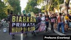 Kampanye Hari Primata oleh aktivis dan relawan Profauna Indonesia di Surabaya berkeliling di kawasan Taman Bungkul saat car free day, Minggu, 26 Januari 2020. (Foto: Profauna).