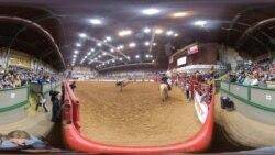 Texas Rodeo Bronco Riding