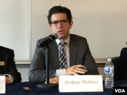 布鲁金斯学会全球经济与发展项目高级研究院梅尔泽 (美国之音钟辰芳拍摄)