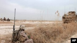 U.S. Marine Corps Cpl. Matthew W. Delari, with Charlie Company, 1st Battalion, 3rd Marine Regiment, provides security during a patrol near Marjah, Afghanistan, Feb. 21, 2010. Marines are linking up with other Task Force Helmand units in the area to discus