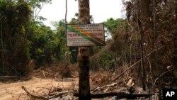 """Papan pengumuman dalam Bahasa Portugis """"Kawasan Dilindungi"""" di perbatasan antara tanah adat Menkragnotire dan Cagar Alam Serra do Cachimbo di Altamira, di negara bagian Para, Brazil, 31 Agustus 2019."""