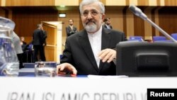 Iran's International Atomic Energy Agency (IAEA) ambassador Ali Asghar Soltanieh attends a board of governors meeting at the UN headquarters in Vienna, Austria, March 4, 2013.
