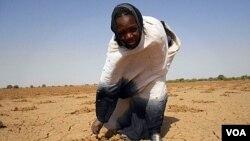 Penduduk Mauritania akan mengalami bencana kelaparan tahun ini bila tidak segera diambil tindakan untuk mengatasinya (foto: dok).