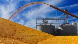 PCD pede debate parlamentar sobre milho produzido por chineses em São Tomé e e Príncipe